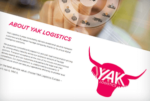 logistics website and brand identity